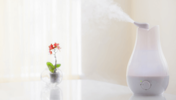 7 Quietest Humidifier In 2021: Silent Humidifiers For Bedroom Or Nursery