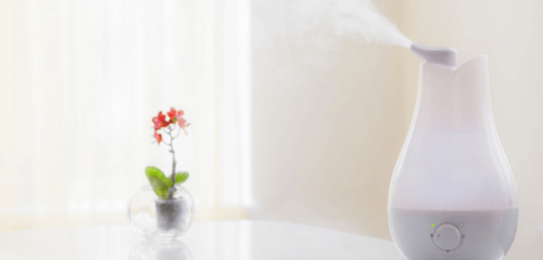8 Best Quietest Humidifier In 2020_ Adds Moisture & Prevent Dryness