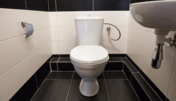 The 5 Best Quiet Flush Toilets Reviews and Buying Guide
